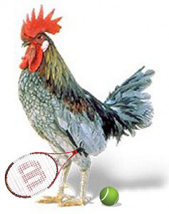 Chicken Tennis Player